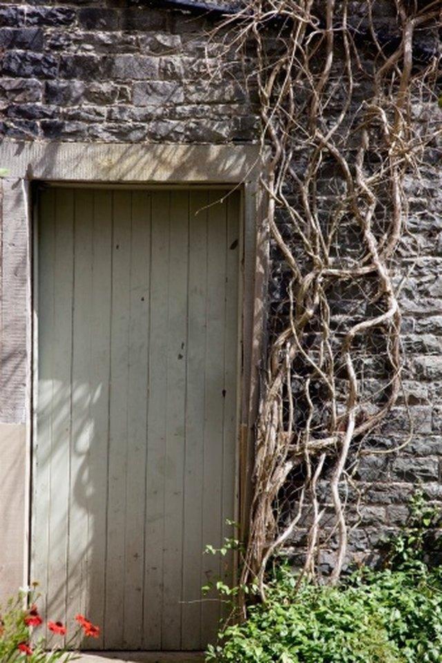 cheap alternatives  building  shed saplingcom