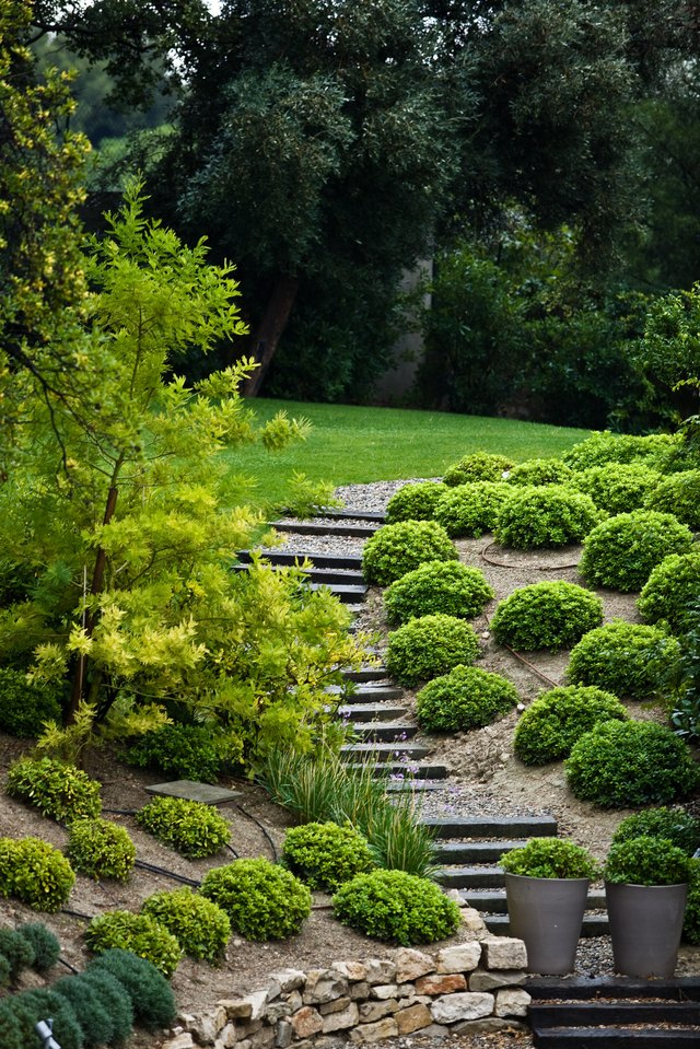 Steep hill landscaping Stairway Do It Yourself Cheap And Easy Backyard Landscaping Solutions For Steep Grassy Hills Saplingcom Saplingcom Do It Yourself Cheap And Easy Backyard Landscaping Solutions For