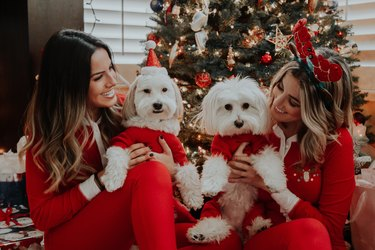 Women and pet dogs dressed in matching red suits