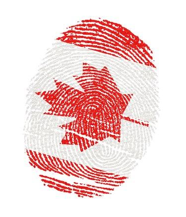 How to Find My SIN Number                           Fingerprints