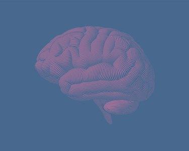 Pink engraving brain side view illustration on green BG