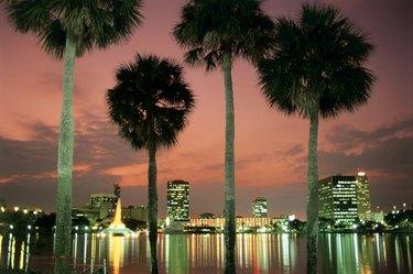 Orlando  Florida  USA