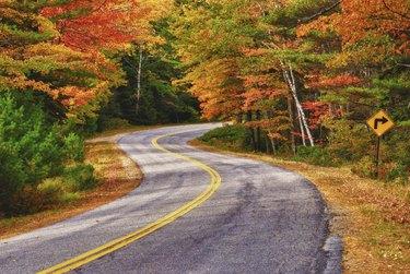 Winding autumn road
