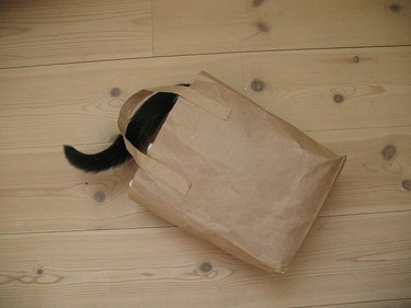 A cat hides inside a paper bag on a wooden floor.