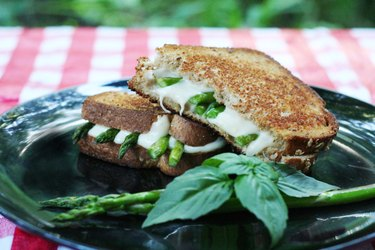 On top of a picnic blanket sits a black plate with a sandwich cut in half, garnished with basil and asparagus spears.