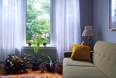 Living room painted periwinkle