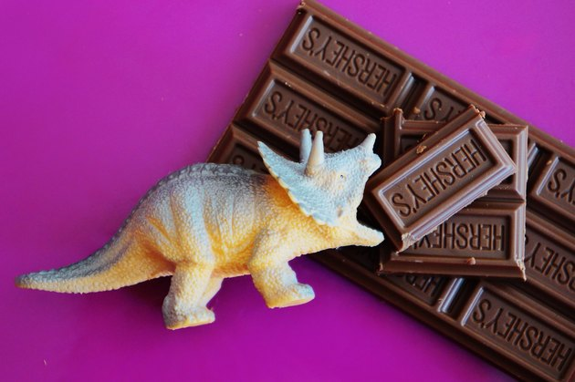 "Toy triceratops ""eating"" bar of Hershey's chocolate"