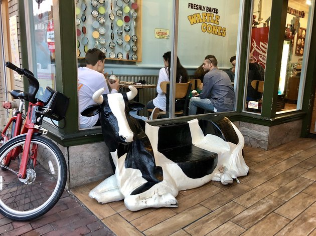 Cow statue outside ice cream shop