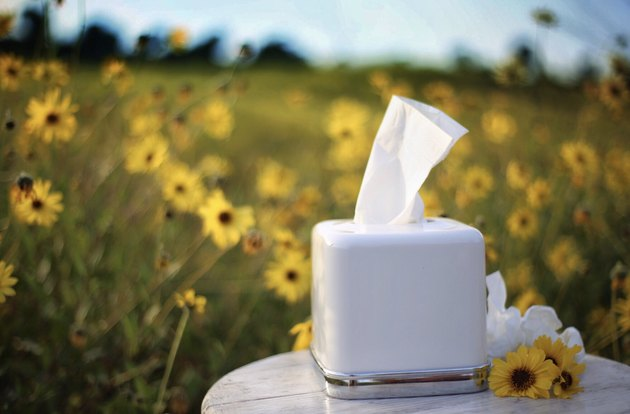 Box of tissues against a field of yellow wildflowers