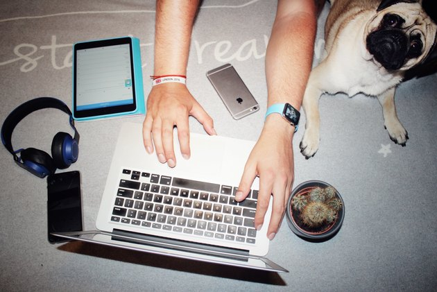 Hands surrounded by Apple products plus a pug