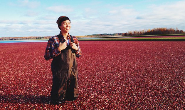 Man in waders standing in cranberry bog