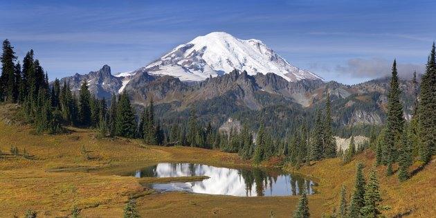 Reflection of trees and a snowcapped mountain in a lake, Tipsoo Lake, Mount Rainier, Chinook Pass, Mount Rainier National Park, Washington, USA