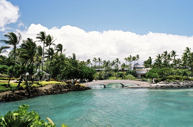 Hawaii hotel bay scenic