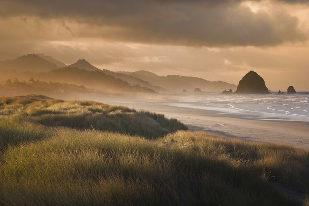 Cannon Beach in Gold