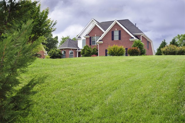 American house with beautiful green lawn