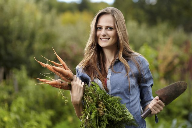 Young woman gardener holding a sheaf of carrots