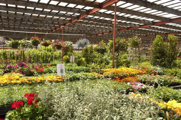 Garden Center Greenhouse