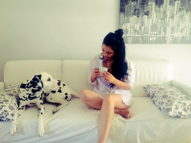 Young woman on couch with mug and Dalmatian