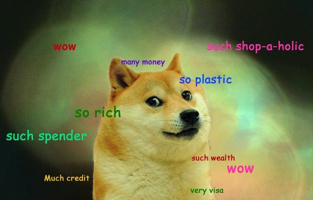 debt doge