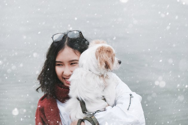 Young woman cuddling spaniel in the snow