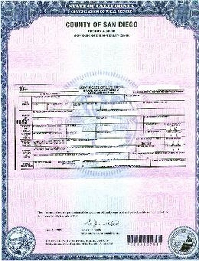 How To Verify A Birth Certificate Sapling Com